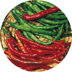 PIMENT FORT CAYENNE LONG SLIN